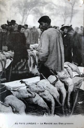 Marchés aux gras