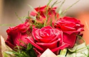 Fête de la Saint Valentin