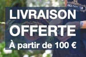 Livraison offerte à partir de 100€